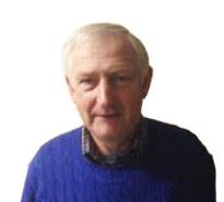 Bertie Guinan